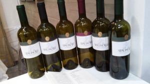 Spagnolli-bottiglie2