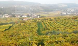 Valpolicella-panoramica